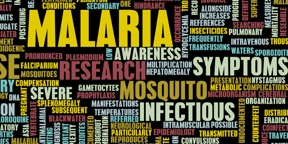 Malaria imported into the UK 2016