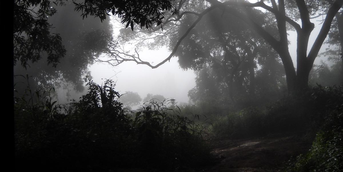 Marburg in Guéckédou, Guinea